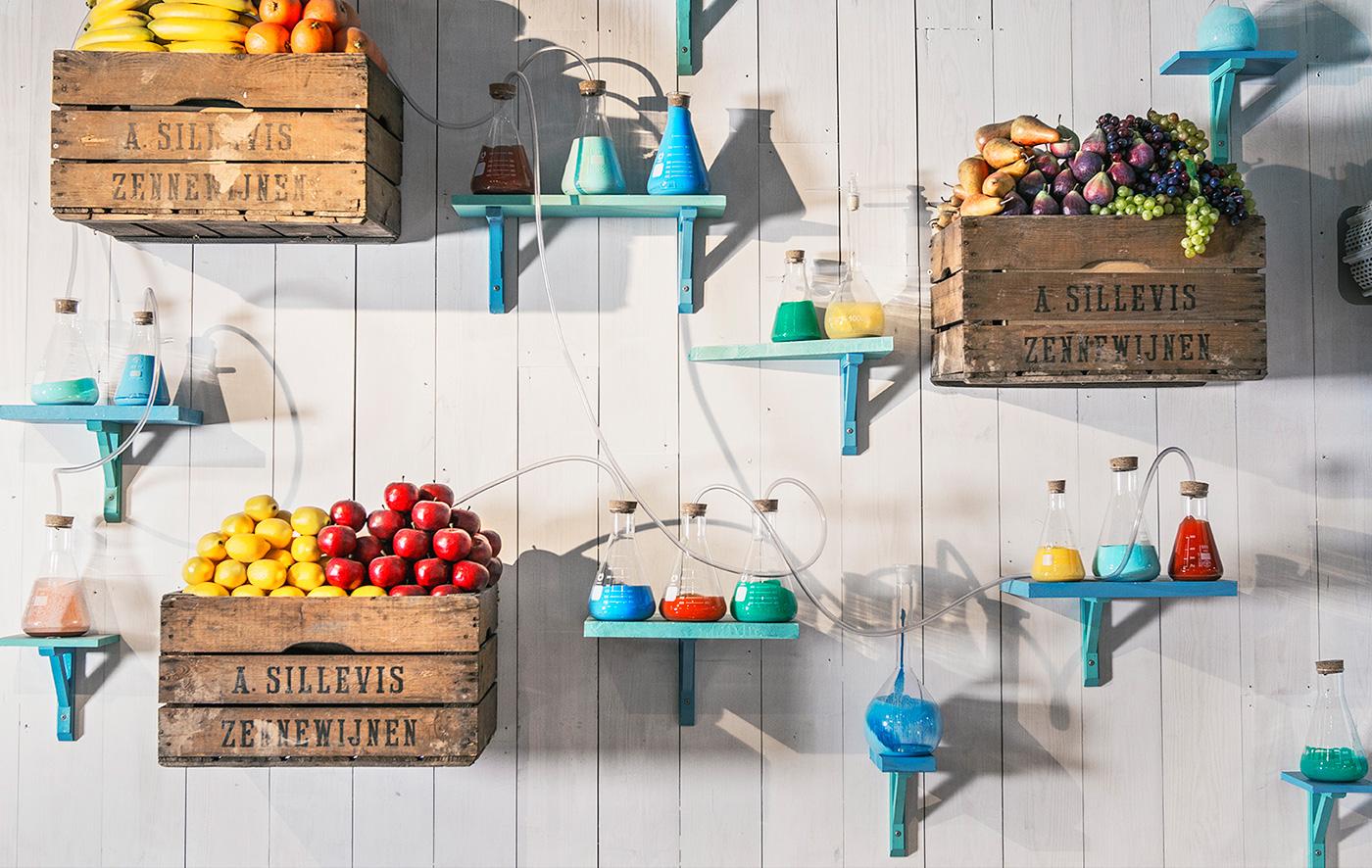 Fruits_lab